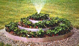 12 Best Images About Strawberry Beds On Pinterest 400 x 300