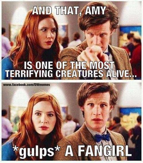 I think they should have an episode where the doctor and his companion are stuck on a planet full of doctor fans. For real. WHERE IS MOFFAT?!