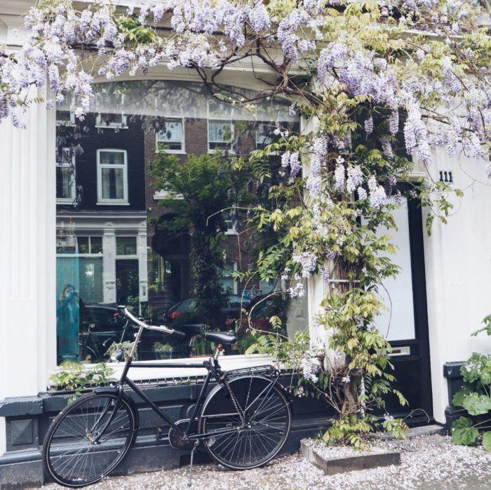 A Mini Amsterdam City Guide | Sophie Cliff | Bloglovin'