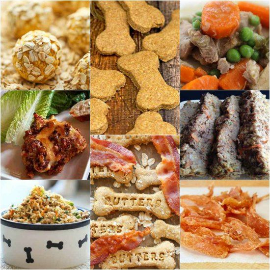 Homemade dog food is a great way to save money while serving nutritious food. You can easily prepare these tasty homemade dog food and treat recipes.
