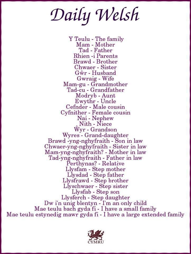 Daily Welsh: Y Teulu - The Family