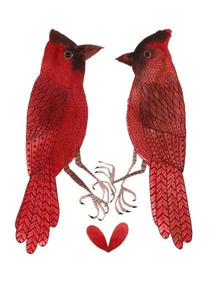 Golly Bard: Birds Red, Blushes Birds, Loss Bard, Art Tattoo, Birds Graphics, Birds Of Paradis, Cardinals Birds Illustrations, Bard Drawings, Red Birds