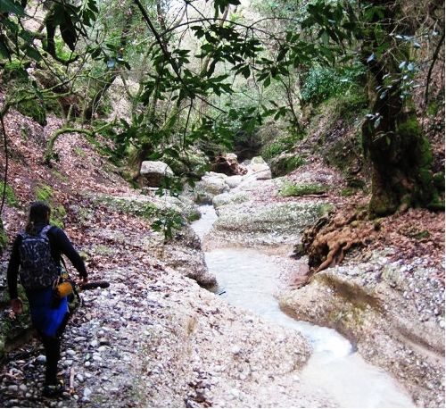 Erymanthos river is one of the most amazing places for trekking!