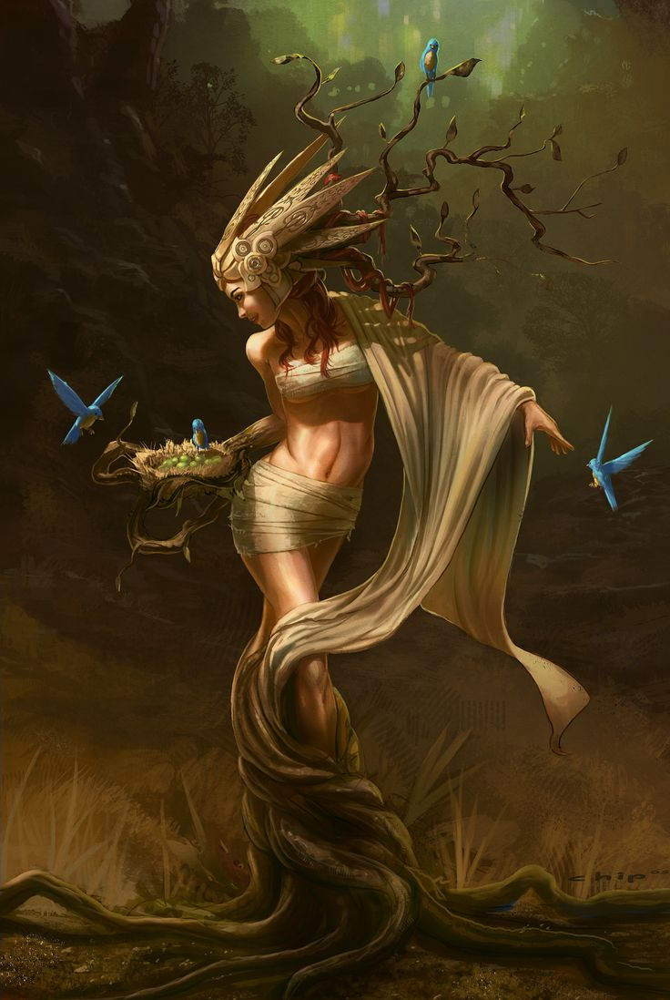 885 best realm of elves_pixies & fairies images on pinterest