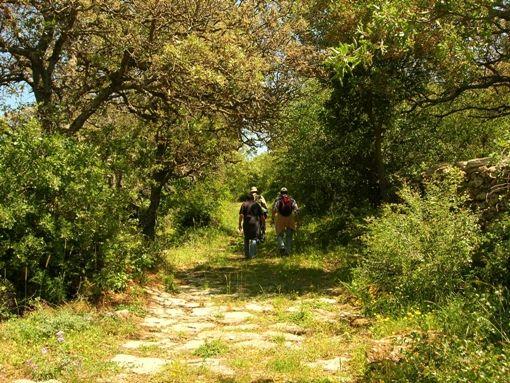 VISIT GREECE Hiking path in Kea island