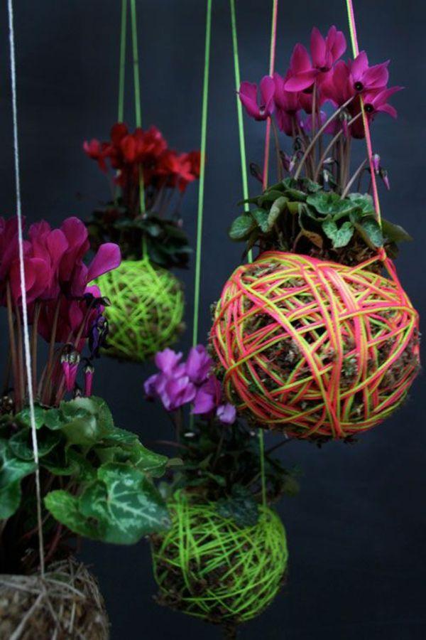 1000+ Ideas About Blühende Zimmerpflanzen On Pinterest | Garden ... Bluhende Zimmerpflanzen Lichtbedarf