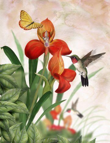 THOMAS WOOD ~ orange orchids ~ hummingbird ~ butterfly