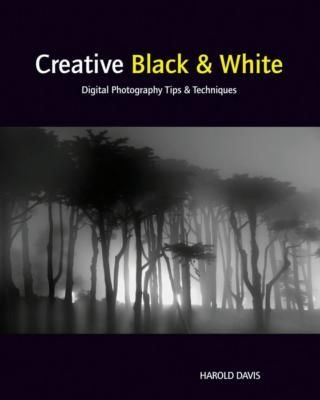 Creative Black  White: Digital Photography Tips and Techniques