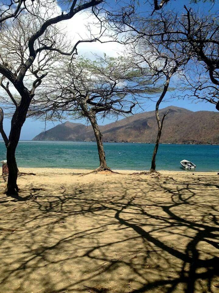 Bahía Concha.