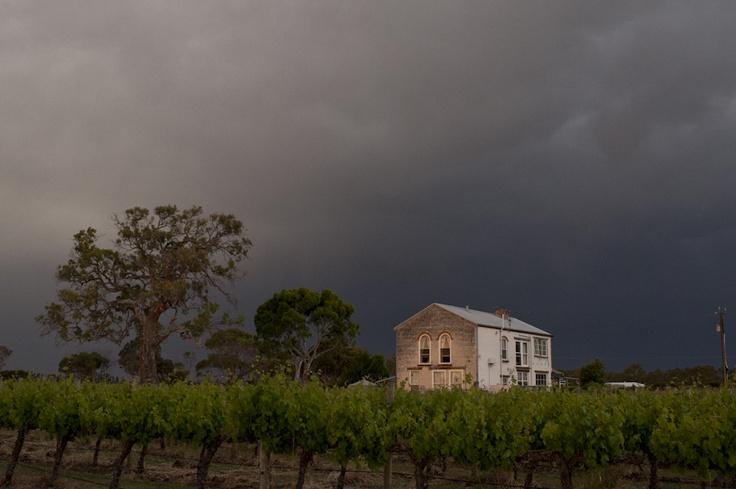 Personal Work by J.Crew Photography - Australia - Coonawarra Region