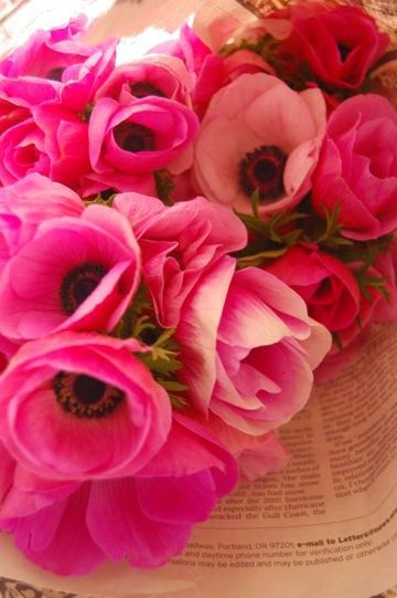 Just Picked #pavelife #garden #flowers: Pink Flowers, Pretty Pink, Wedding Ideas, Wedding Flowers, Beautiful Flowers, Garden, Pink Anemones
