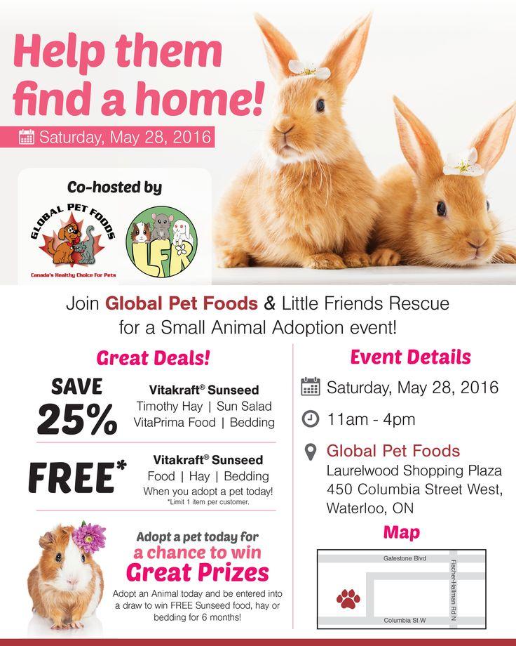 Pet Food Store Kitchener
