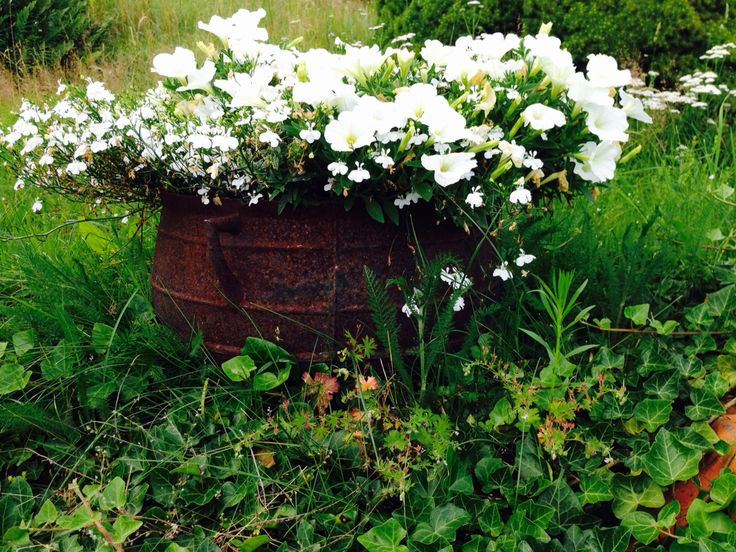 Blommor i järnurns