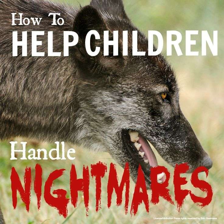 Blog post at KiddyCharts :   I have to stick my neck out and say I think a lot of the advice out there about nightmares is plain wrong!  Nightmares are a common pa[..]