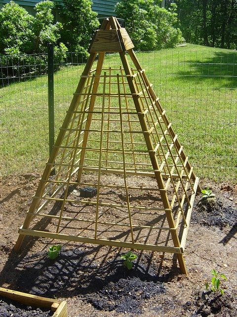 trellis for beans or cucumbers... build this during the winter in the garage so it's ready for spring.