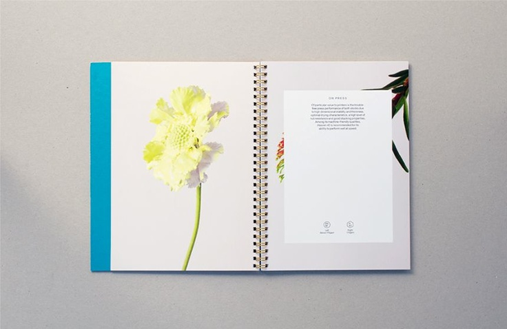 StudioMakgill :: GFSmith Fine Coated Promo | People of Print