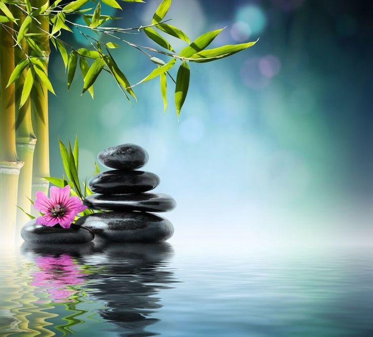 From the bitterness of disease man learns the sweetness of health. #zen #spa #peace #spiritual #enlightenment #spiritual #faith #positivevibes #goodvibes #positiveenergy  #powerthoughtsmeditationclub