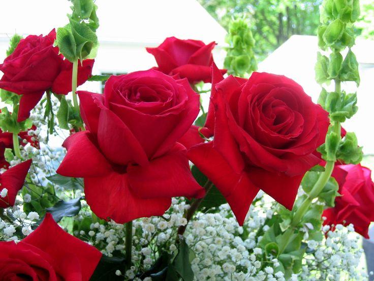Rose Desktop Background Wallpaper Free Flowers Centerpieces