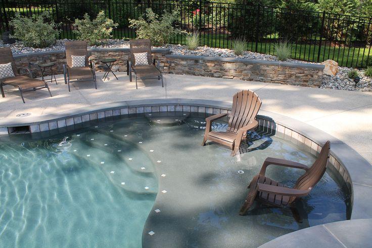 Custom Swimming Pool With Sun Shelf Home Garage And