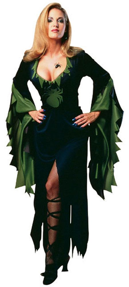 womens enchantra sexy witch costume always love this one - Spider Witch Halloween Costume