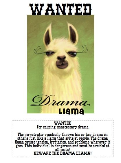 Middle school drama can really kill it... a fun way to address that. BEWARE THE DRAMA LLAMA! = )