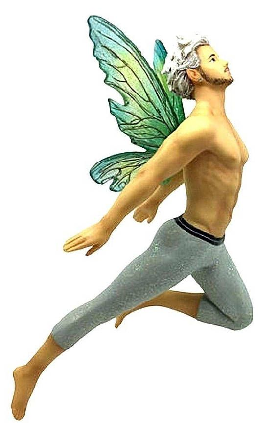 best 25  male fairy ideas on pinterest