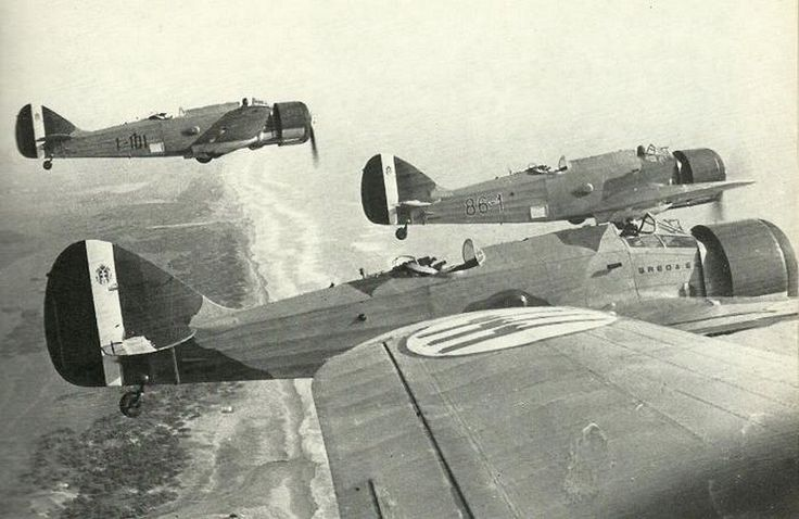 Italian Air Force, 1938 - Breda Ba.64 formation (Assault Plane, low-slope monoplane, two-seater structure, fully metallic) flying on the coast of the province of Rome.