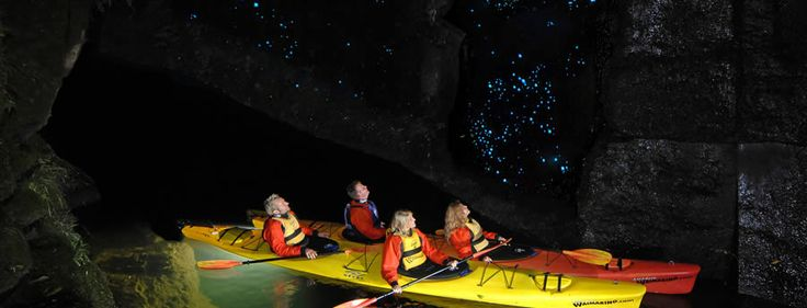 Glow Worm Tour 3 this is $130 for a night trip kayak seeing gloworms with mulled wine and cheese nr Tauranga