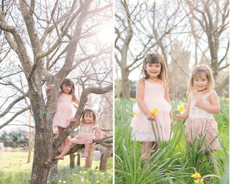 Spring | Daffodils | CheekyArt www.cheekyart.co.nz