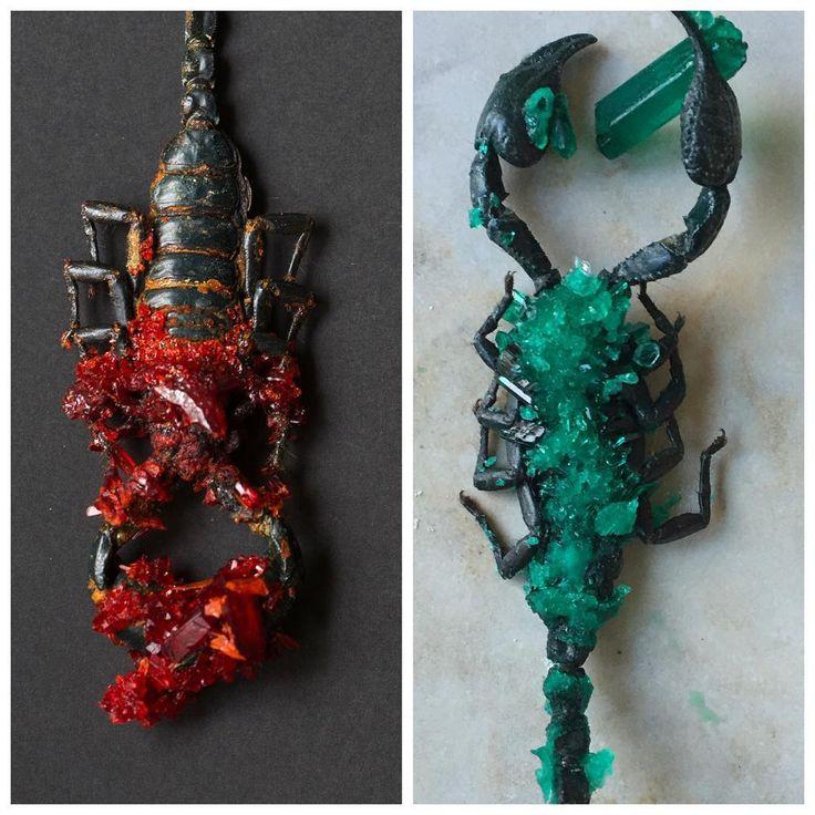oooh, such lovely decadence... chemistry and art by Tyler Thrasher  #tylerthrasher #crystallized #scorpion #chemistry #alchemy #tulsa