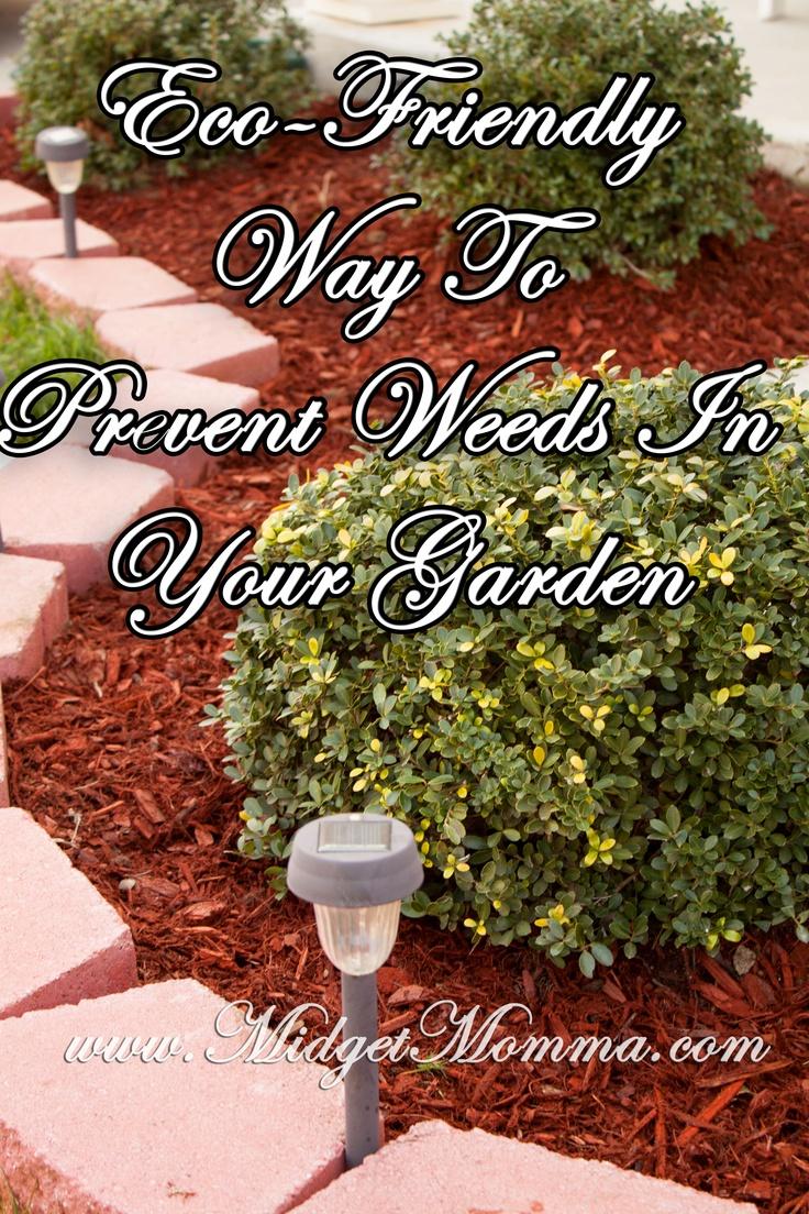 Eco-Friendly Way To Prevent Weeds In Your Garden http://www.midgetmomma.com/2013/04/29/eco-friendly-way-to-prevent-weeds-in-your-garden/
