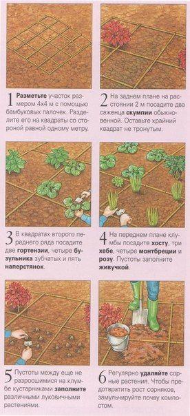 СХЕМЫ ЦВЕТНИКОВ, КЛУМБ И МИКСБОРД..