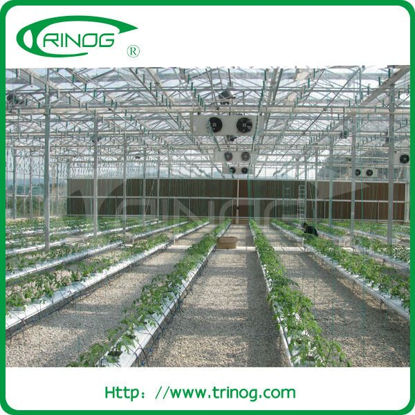 Source Advanced nft hydroponic systems for sale on m.alibaba.com