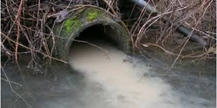 Image result for water pollution in japan