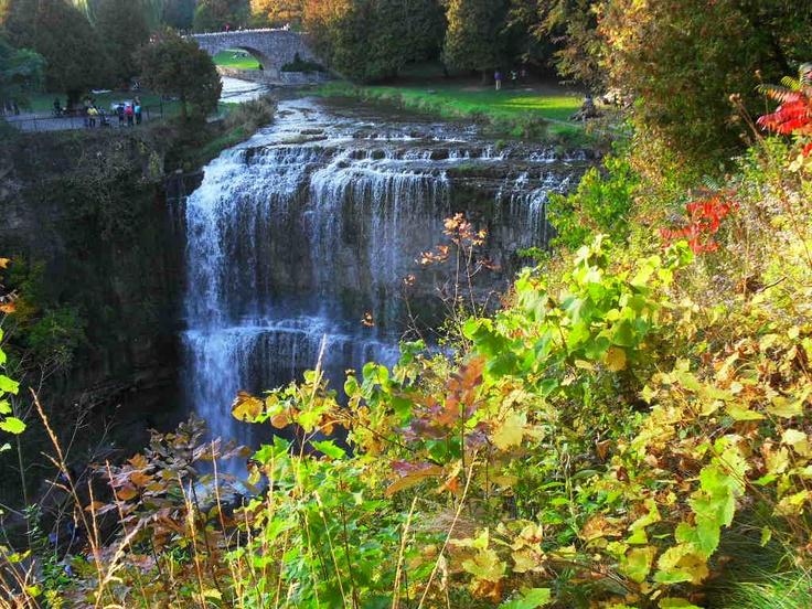 Webster's Falls  Spencer Gorge Conservation Park  October 2011