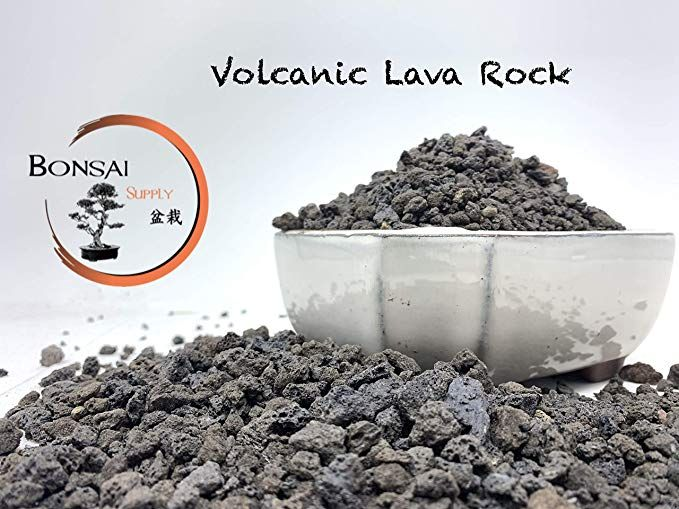Lava Rock The Bonsai Supply 2 Quart Bag Black 1 4 Inch Horticultural Lava Rock Soil Additive For Cacti Succulents Plants Lava Rock Soil Additives Bonsai