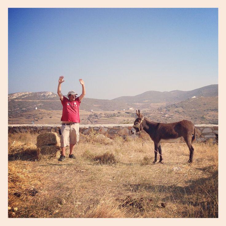 Hands up. Donkey cops. Paros, Greece