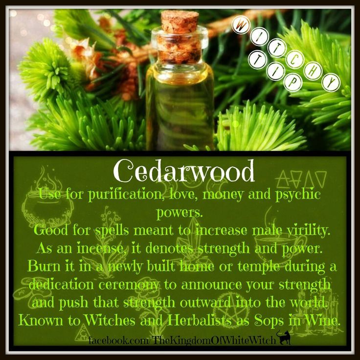 For quality Cedarwood #EssentialOils @ the best prices > https://jadebloom.com/cedarwood-atlas-essential-oil-therapeutic-grade-10ml.html