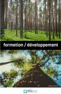formation développement | Piktochart Infographic Editor