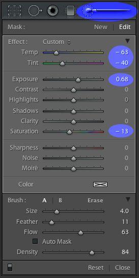 Remove Color Casts Using Lightroom Adjustment Brush