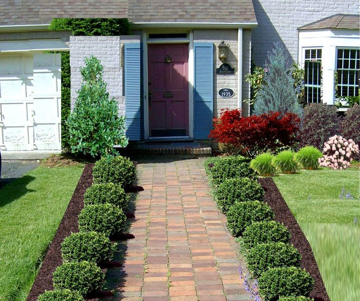 Beautiful ideas of front yard of walkway to front door with plants beside the way and large grassy yard