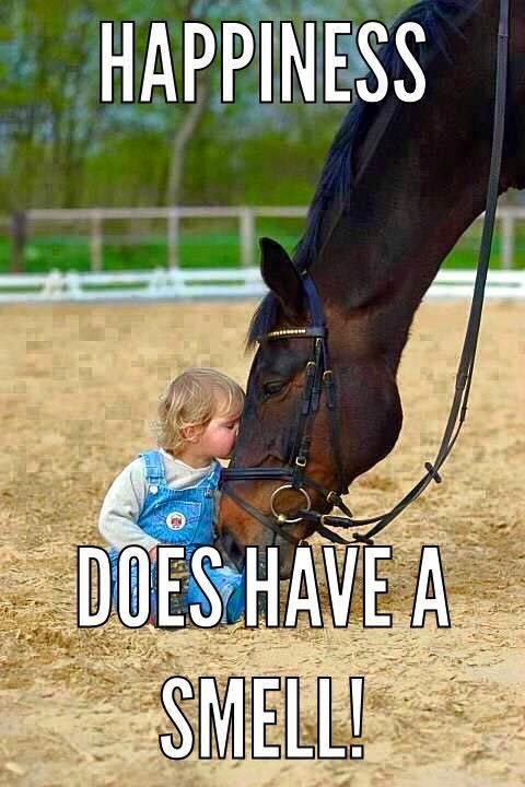 Image result for weird horse girl meme