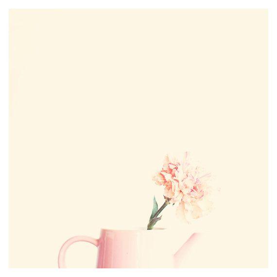 25+ beste ideeën over oeillet fleur op pinterest - anjer bruiloft