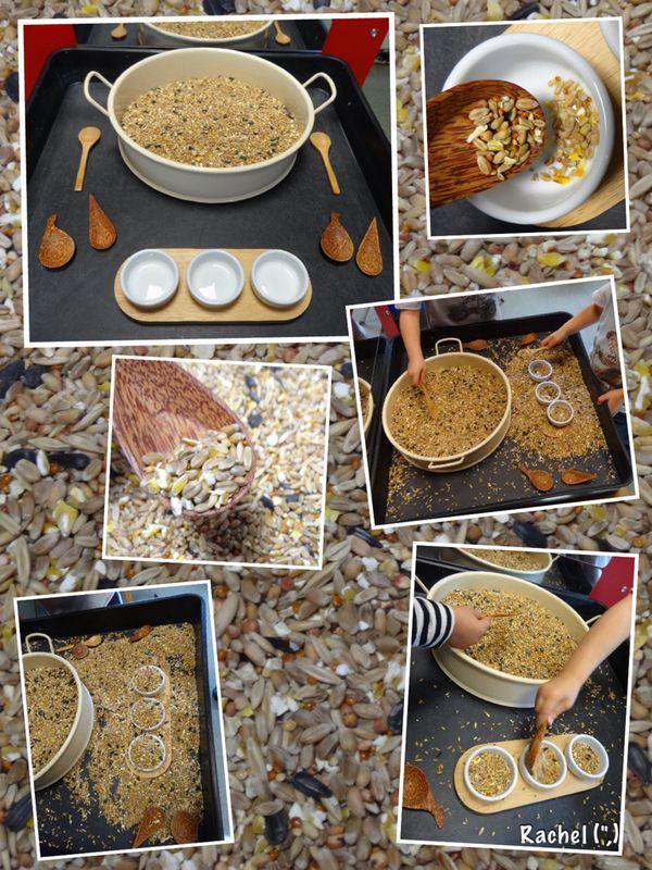 """Exploring bird seed - from Rachel ("""",)"""