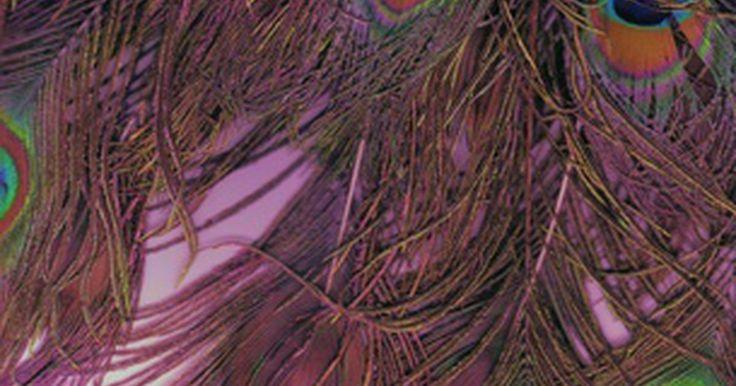 Instruções de como fazer um cocar de guerra indígena. Os cocares usados pelos índios americanos são chamados de penachos de guerra, ostentando uma variedade de penas coloridas que, depois de uma guerra, significavam as suas vitórias. É possível fazer, em menos de uma hora, uma réplica caseira para festas à fantasia ou apresentações. Se for para o seu filho, peça que ele participe da confecção do ...