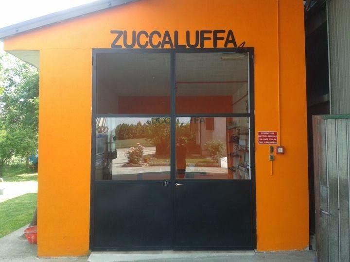 """In questo post voglio parlarvi di spugne :ZUCCALUFFA, un prodotto sano ed eco-compatibile.Da circa quattro anni Zuccaluffa ha iniziato a produrre e commercializzare una linea di spugne ottenute da un particolare tipo di zucca chiamata """"LOOFAH"""" (LUFFA in italiano)."""