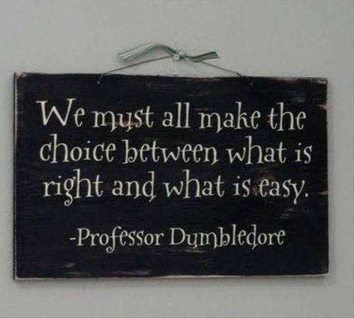 Harry Potter - LJ: My philosophy long before JKR penned it as Dumbledore's quote.