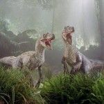 Raptors are Helping - News and Fun Facts from a world where Raptors and Humans Co-Exist