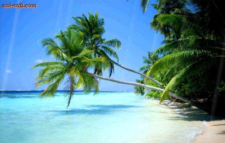 http://cdn.pcwallart.com/images/moving-desktop-backgrounds-beach-wallpaper-1.jpg