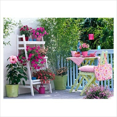 Balcony+Garden   GAP Photos - Garden & Plant Picture Library - Balcony garden with ...